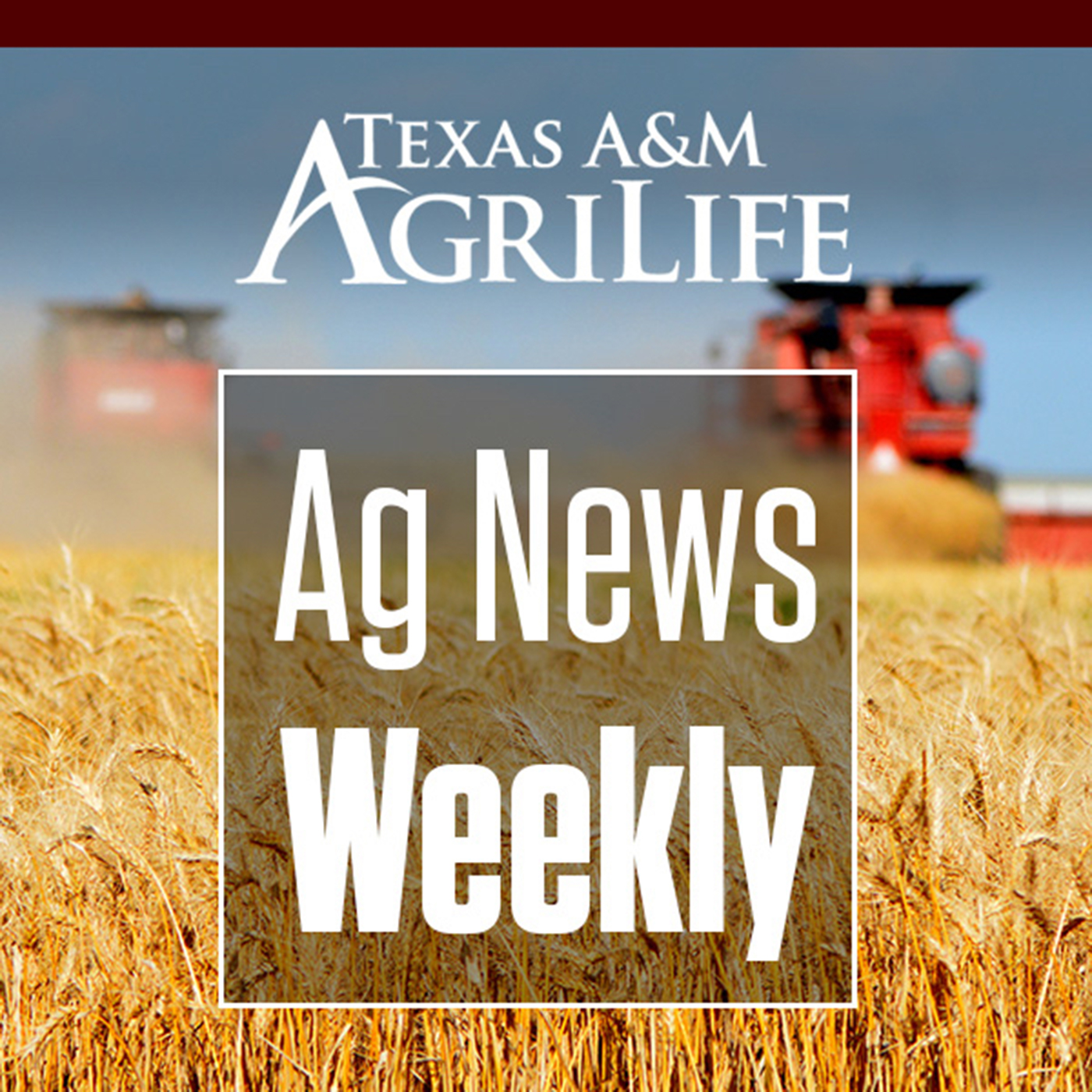 AgriLife Today-AgNews Weekly