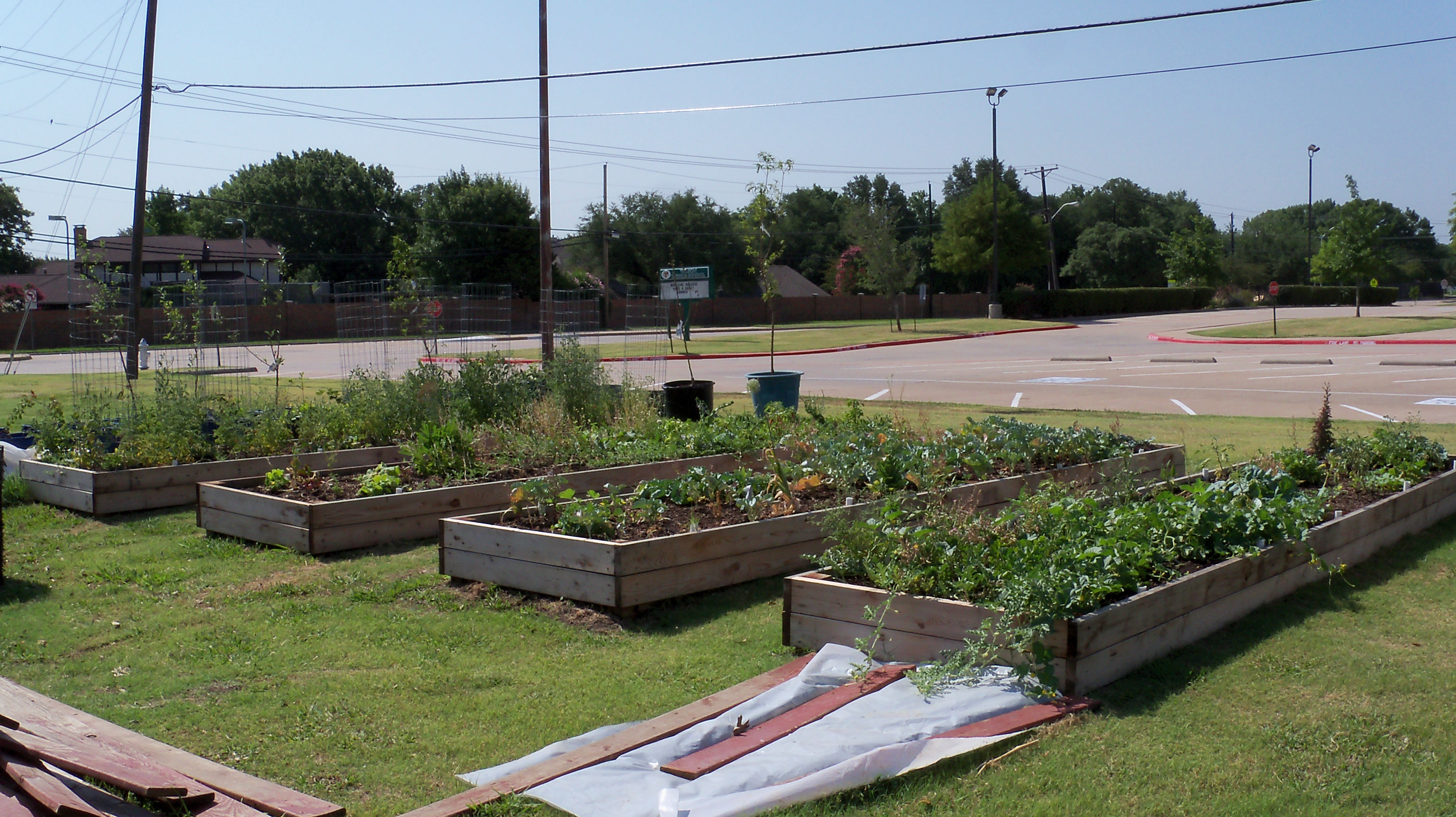 School vegetable gardens - A School Vegetable Garden Can Be A Wonderful Outdoor Classroom For Studying Natural Science Or Just Hanging Out Writing A Story
