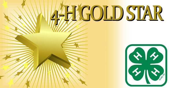 4-H Gold Star