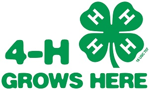 District 6 4-H Youth Development