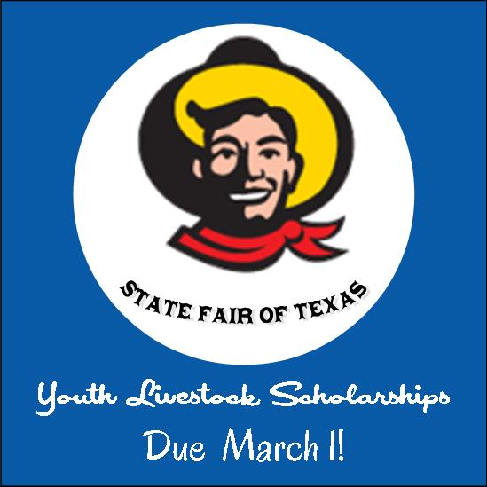 StateFairScholarship