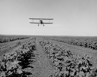 Crop duster during the 1950's.