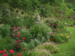 A mixed border reflecting the gardeners love of plants and involvement with the garden.