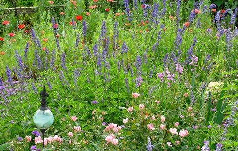 East Texas Gardening | Welcome to East Texas Gardening – briefs on ...