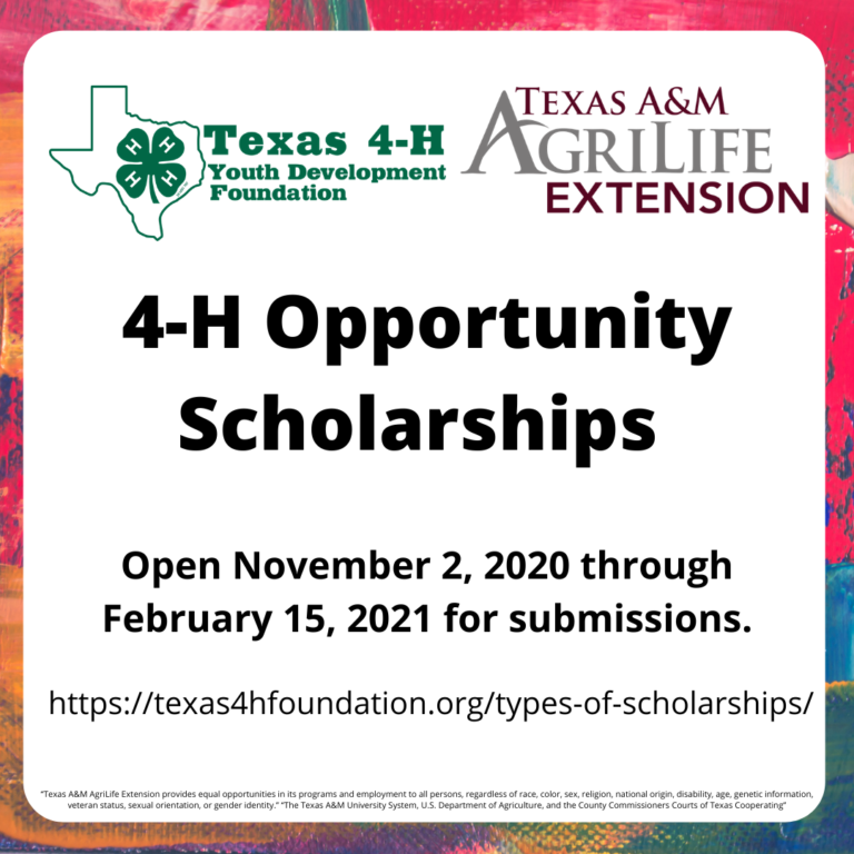 4-H Opportunity Scholarship Program