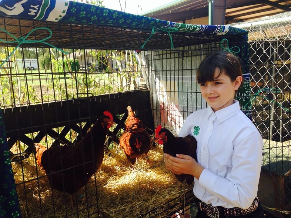 Poultry4H