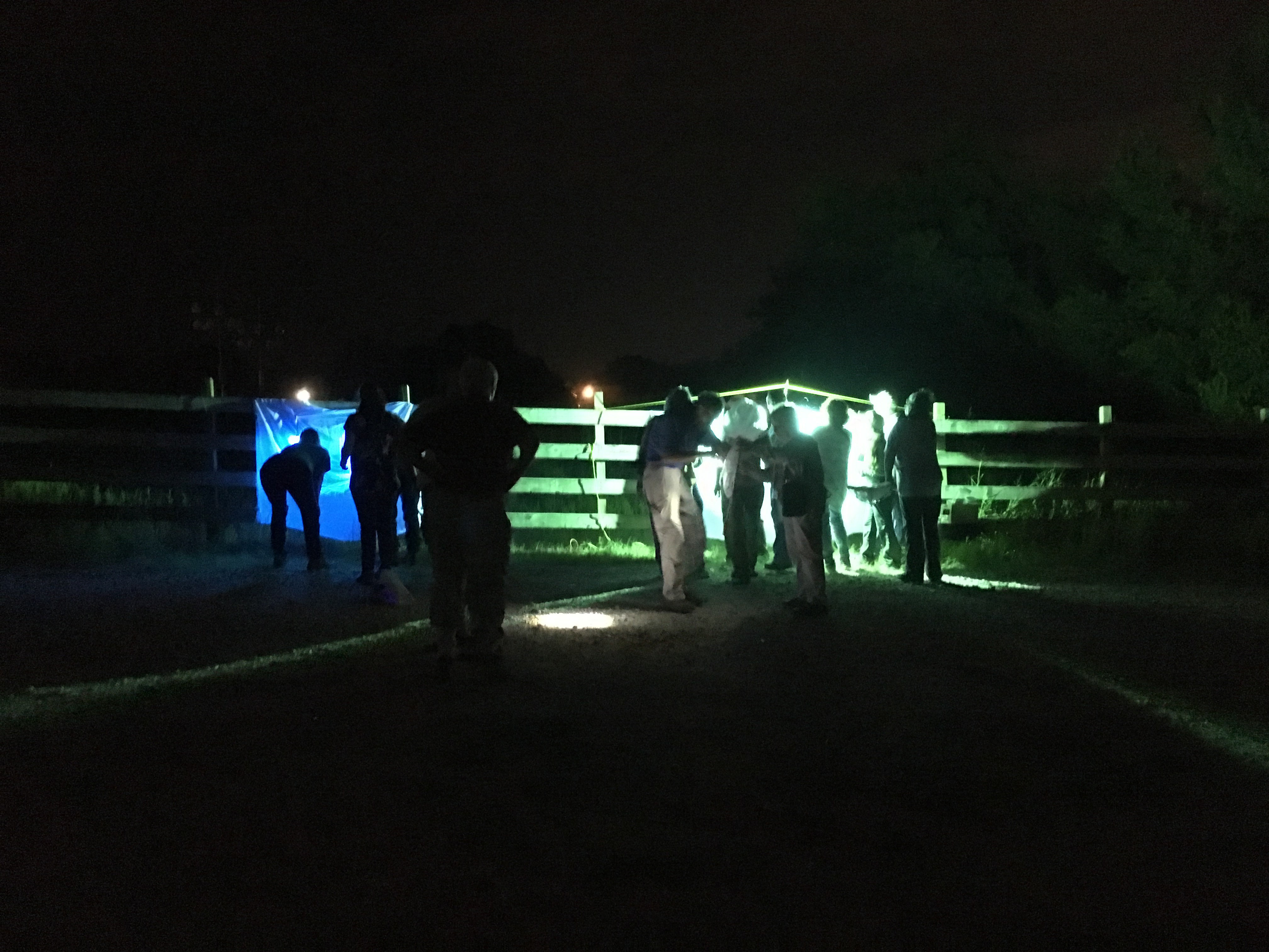 Nighttime collecting at Heard Museum, MVES 9/19/2017