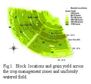 Fig. 1. Block locations and grain yield across the crop management zones and uniformly watered field.