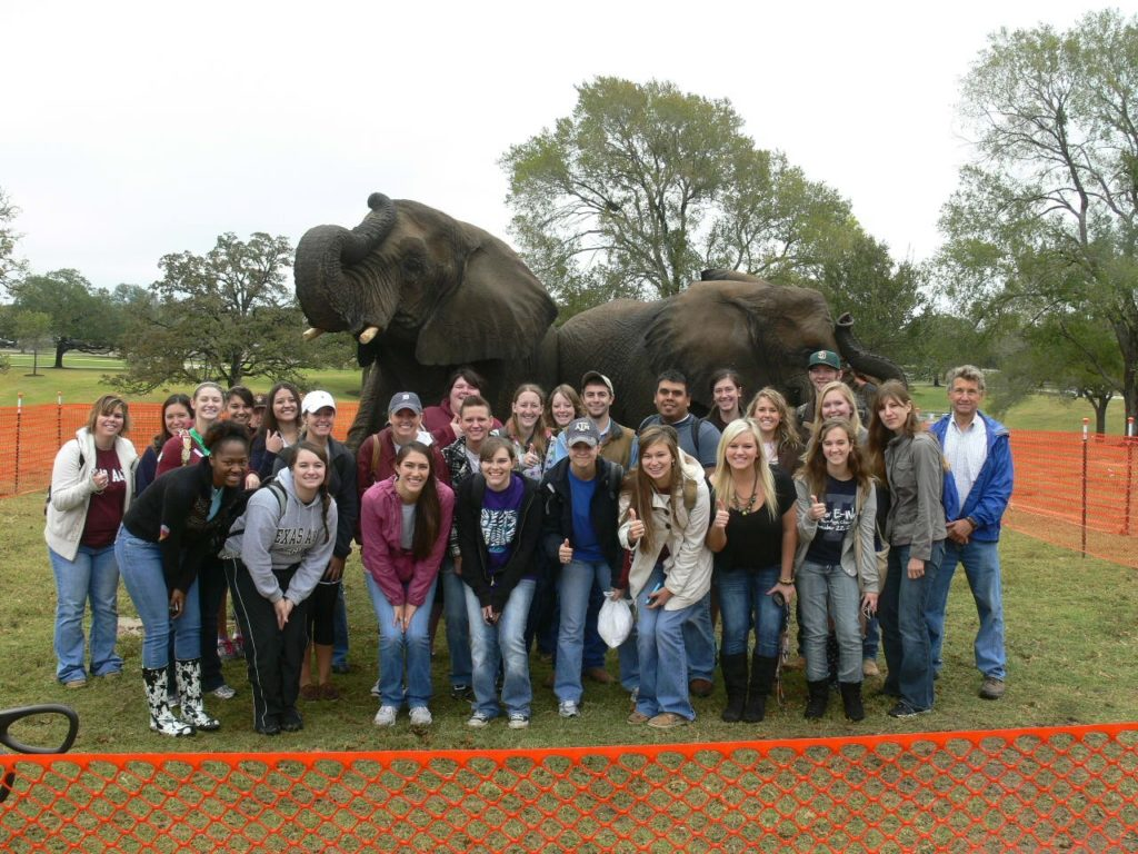 Students pose as a group in front of two elephants